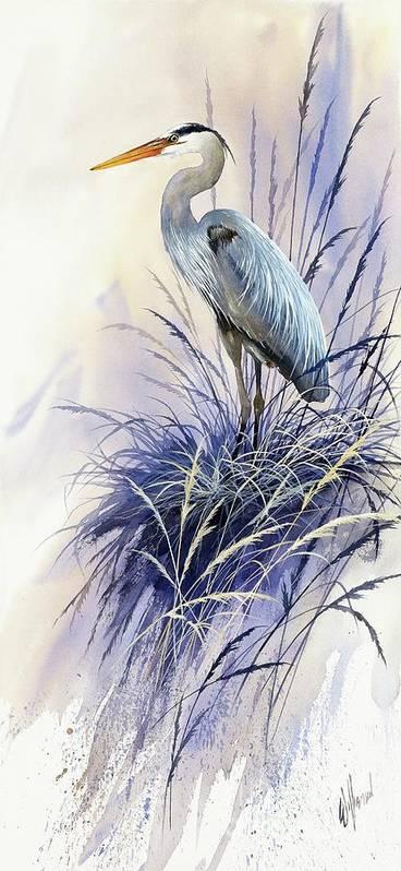 Herons Grace Art Print By James Williamson