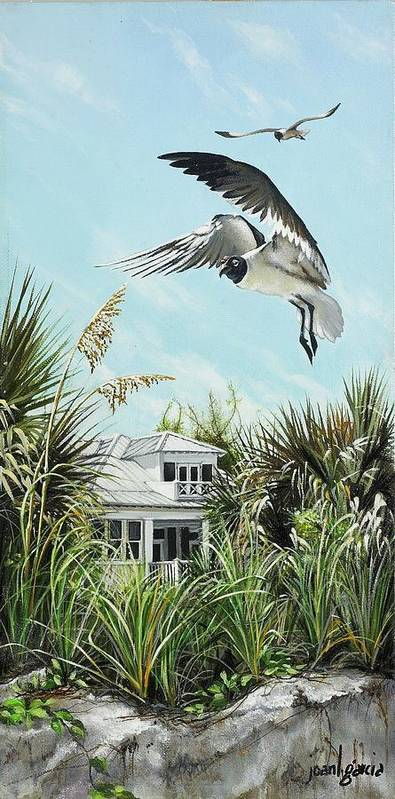 Bird Art Print featuring the painting North Shore Landing by Joan Garcia