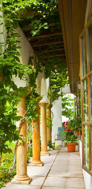 Garden Print featuring the photograph Up At The Villa by Theresa Tahara