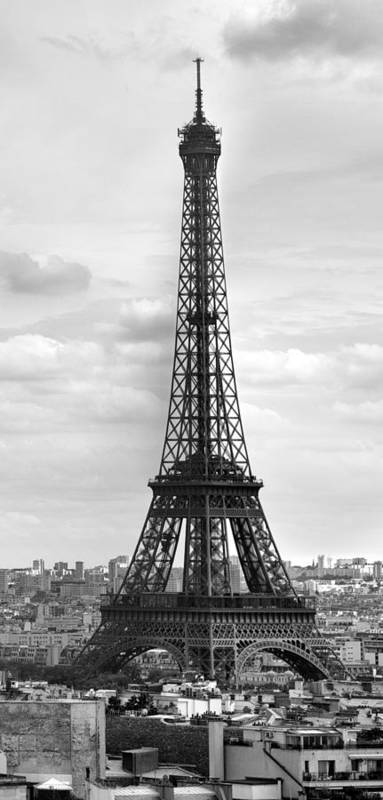 Panoramic Art Print featuring the photograph Eiffel Tower Black And White by Melanie Viola
