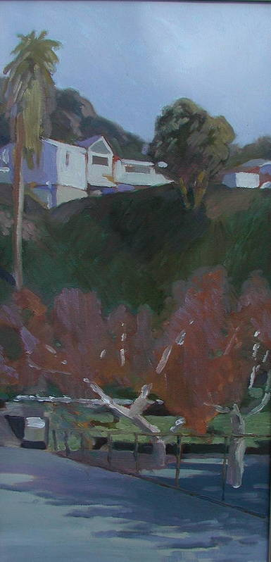 Art Print featuring the painting House Above The Dog Park by Ann Dudrow