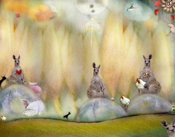 Kangaroo Art Print featuring the photograph Kanga by Karen Divine