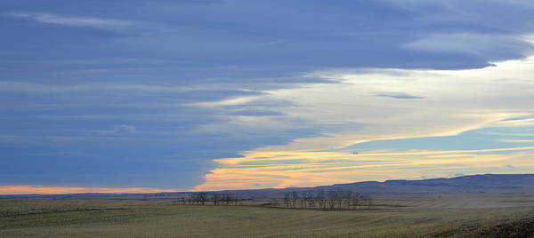 Chinook Art Print featuring the photograph Chinook Panorama by Ed Mosier