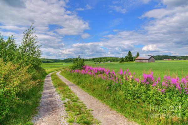 Countryside in Finland by Veikko Suikkanen