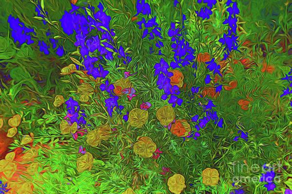 Larkspur and Primrose Garden 12018-3 by Ray Shrewsberry