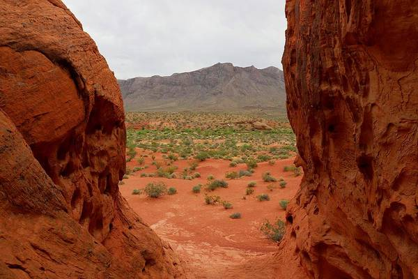 Valley Of Fire State Park Art Print featuring the photograph A New World by Sagittarius Viking