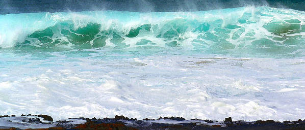 Hawaii Iphone Cases Art Print featuring the photograph At Waters Edge by James Temple