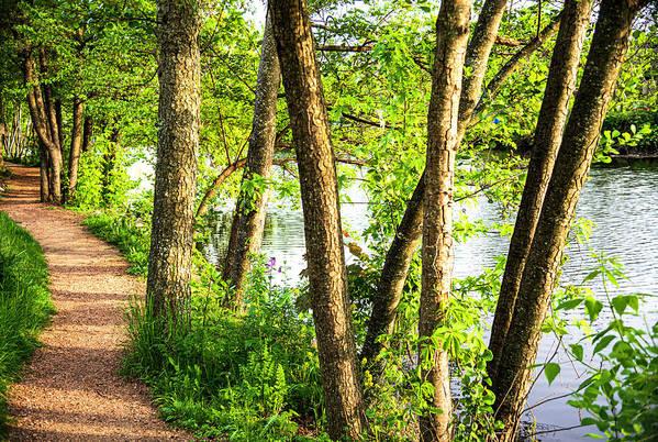 Peaceful Walk by Tim Keagy