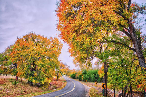 Take Me Home Hill Country Road by Lynn Bauer