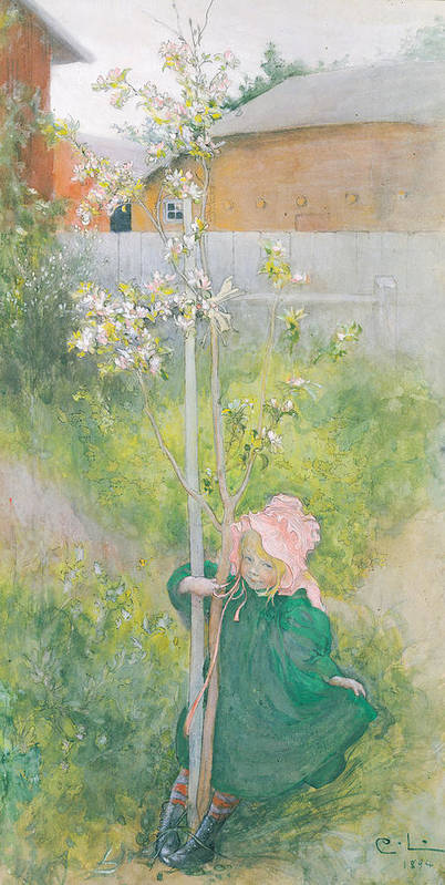 Apple Blossom; Tree; Child; Garden; Bonnet; Fence; Spring Art Print featuring the painting Appleblossom by Carl Larsson