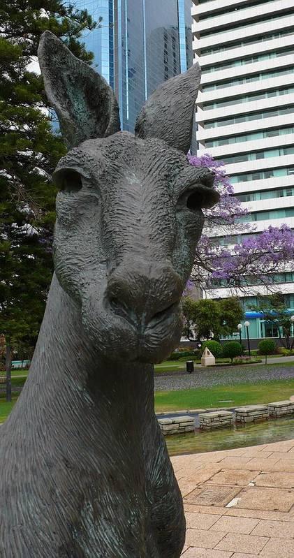 Kangaroo Art Print featuring the photograph Kangaroo Smith Closeup by Gregory Smith
