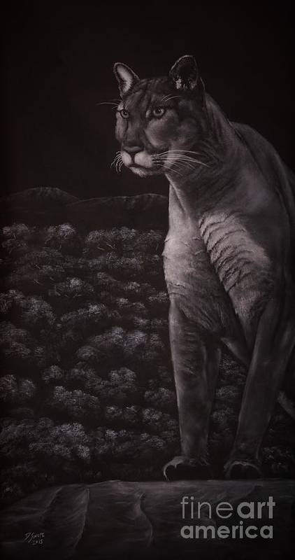 Puma Art Print featuring the drawing Cool For Cats by David Swope