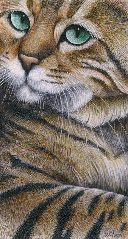 Bengal Cat Art Print featuring the painting Cropped Cat 6 by Carol Wilson