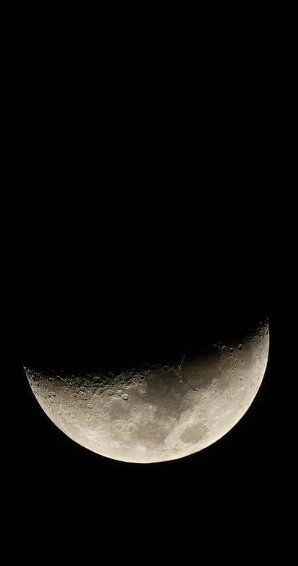 Moon Art Print featuring the photograph The Moon by Kurt Bodenstein