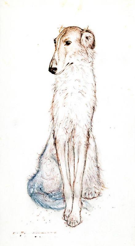 Saluki Art Print featuring the drawing Saluki by Kurt Tessmann