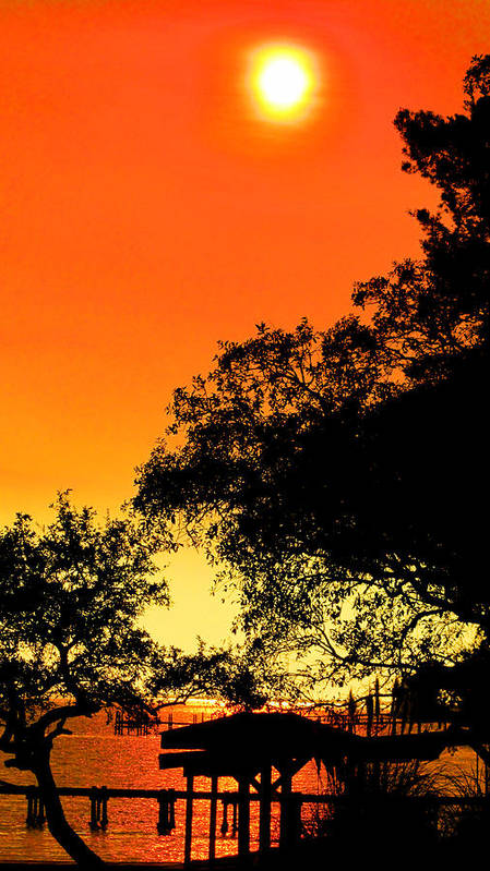 Sun Art Print featuring the photograph Evening Fire by Nicole I Hamilton