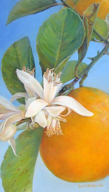 Floral Painting Art Print featuring the painting Fleurs d oranges by Muriel Dolemieux