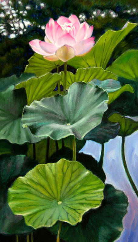 Lotus Flower Art Print featuring the painting Lotus Rising by John Lautermilch