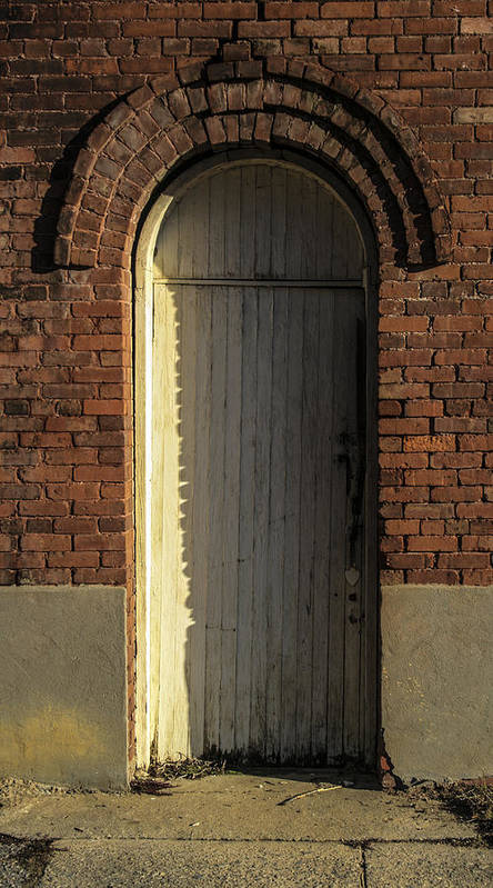 White Art Print featuring the photograph Can I Come In by Steven Taylor