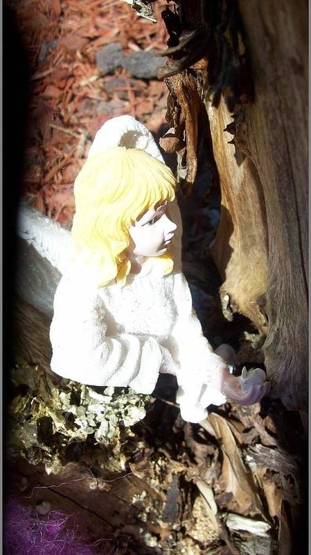 Fairy Art Print featuring the photograph Fairy Captured by Sharon Ackley