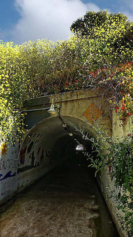 Tunnel Art Print featuring the photograph Tunnel At Crystal Cove by Ron Regalado