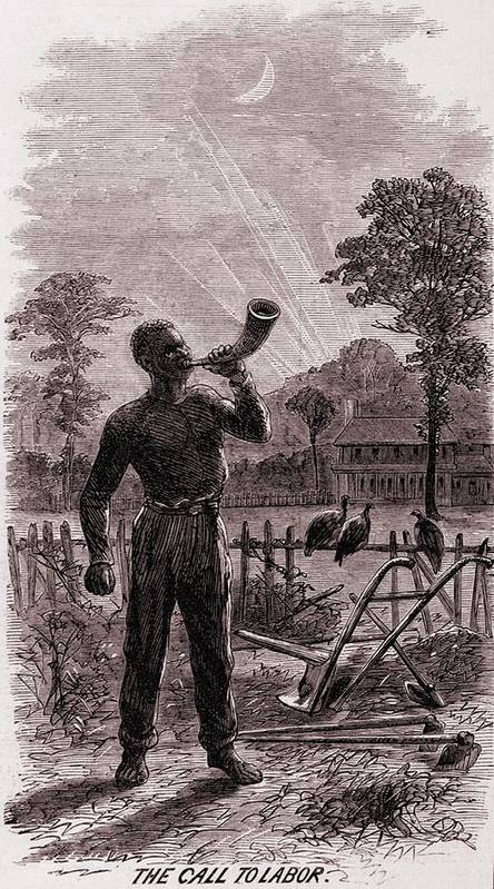 History Art Print featuring the photograph African American Blowing The Wake-up by Everett