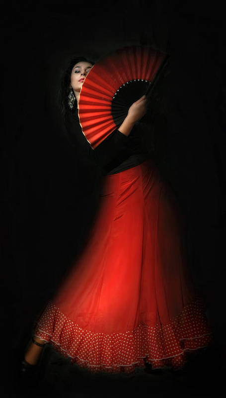 Art Print featuring the photograph Flamenco by Viktor Korostynski