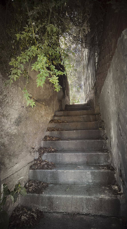 Bisbee Art Print featuring the photograph Old Bisbee Stairway by Lynn Andrews