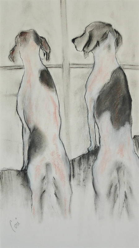 Pastel Art Print featuring the drawing Point Of View by Cori Solomon