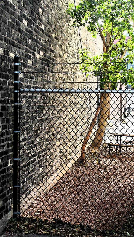 Urban Art Print featuring the photograph Urban Park by Gary Everson