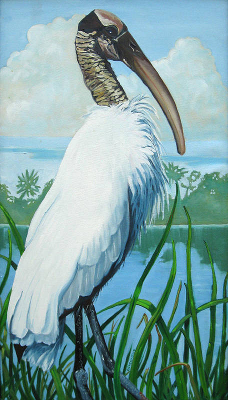 Bird Art Print featuring the painting Wood Stork by D T LaVercombe