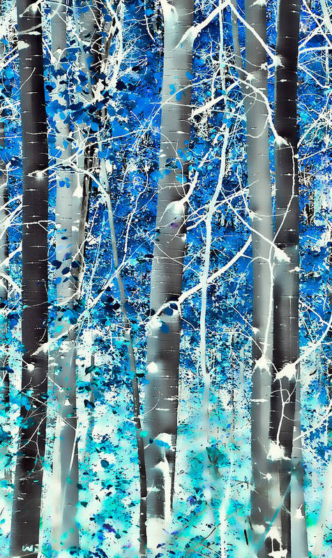 Aspens Art Print featuring the photograph Lost In A Dream by Don Schwartz
