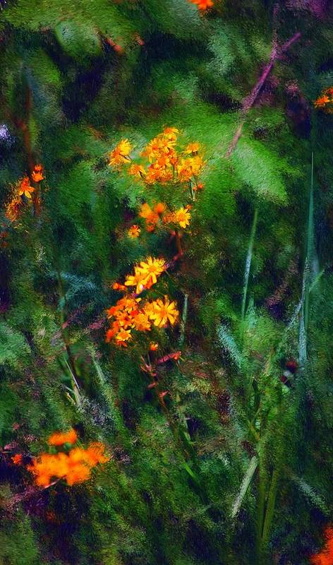 Digital Photography Print featuring the digital art Flowers In The Woods At The Haciendia by David Lane
