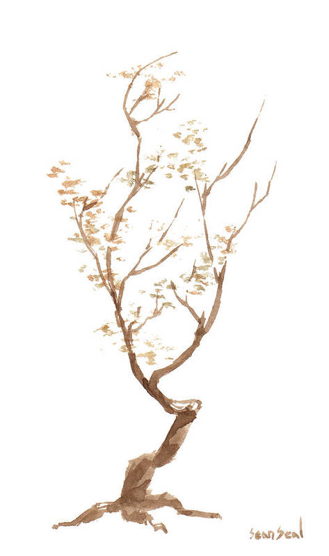 Bonsai Tree Art Print featuring the painting Little Tree 58 by Sean Seal