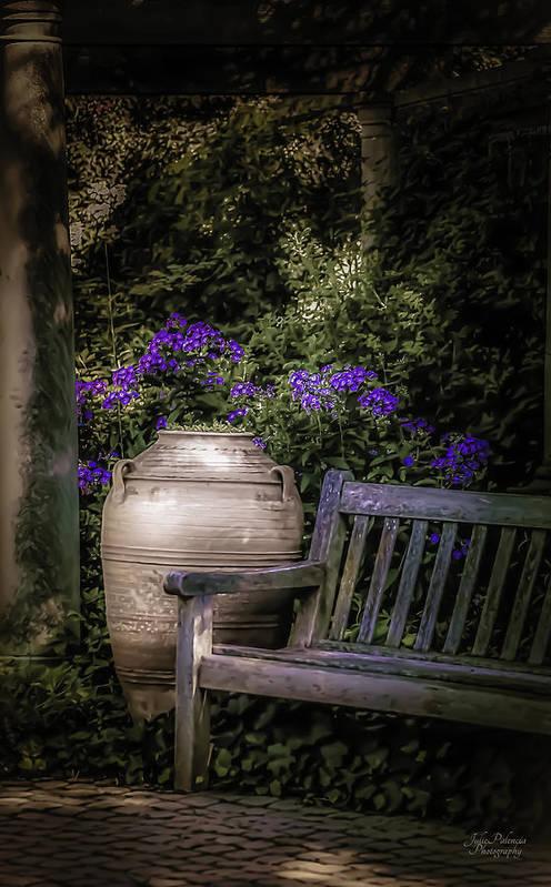 Garden Art Print featuring the photograph As Evening Falls by Julie Palencia