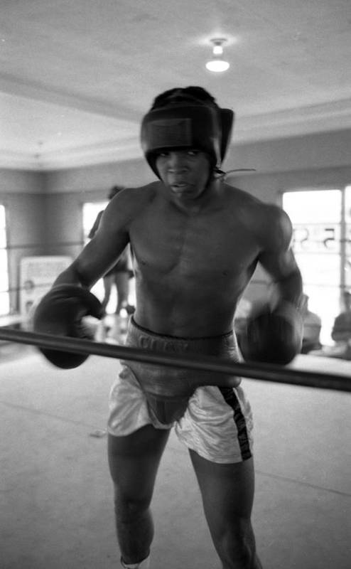 Marvin Newman Art Print featuring the photograph Muhammad Ali Works Out by Retro Images Archive