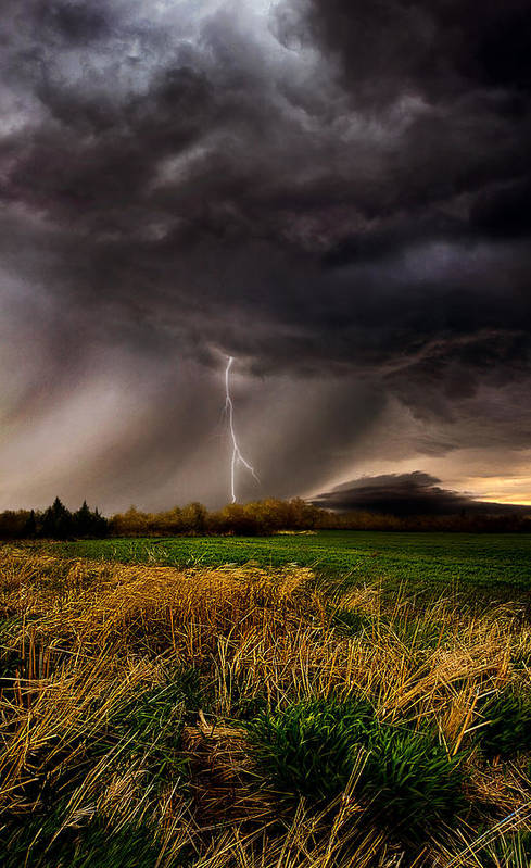 Storm Art Print featuring the photograph Profound by Phil Koch