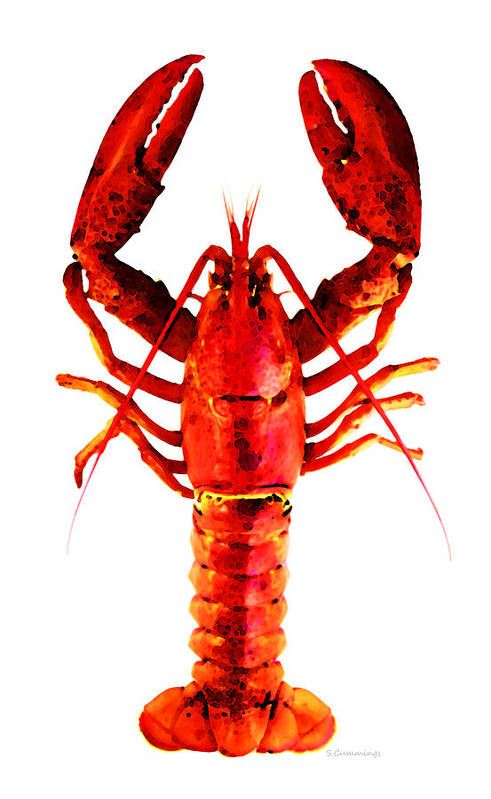 Lobster Art Print featuring the painting Red Lobster - Full Body Seafood Art by Sharon Cummings