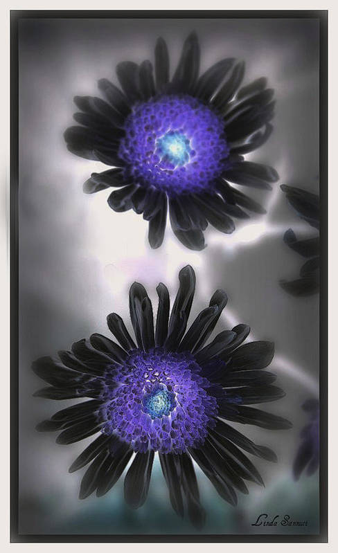 Flowers Art Print featuring the photograph The Color Within by Linda Sannuti