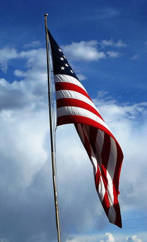 Flag Art Print featuring the photograph United We Stand by Brenda Purvis