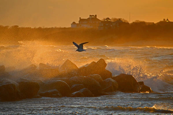 Wild Morning on Cape Cod Bay by Dianne Cowen Photography