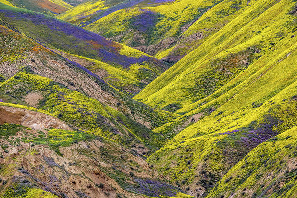 Color Valley by Peter Tellone