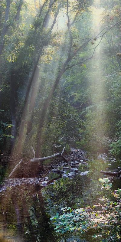 Atmosphere Art Print featuring the photograph Morning Light by Tom Mc Nemar
