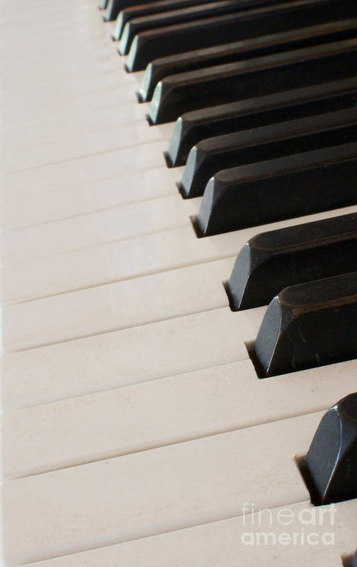Abstract Art Print featuring the photograph Piano Keyboard At Angle by Robert Keenan