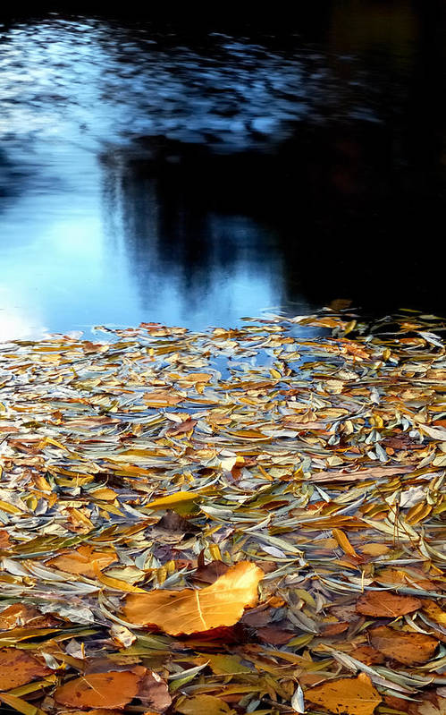 Waters Art Print featuring the photograph Autumn Lake by Steven Milner