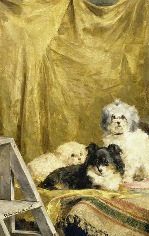 Trumpet Art Print featuring the painting Three Dogs by Charles van den Eycken