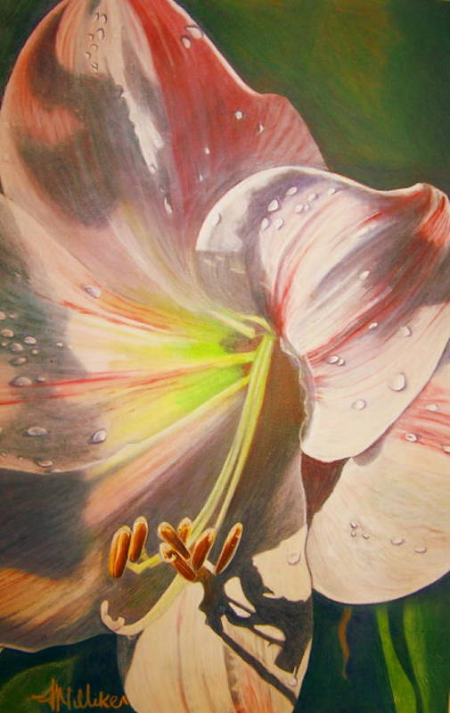 Flowers Art Print featuring the painting Amarylis by Tara Milliken