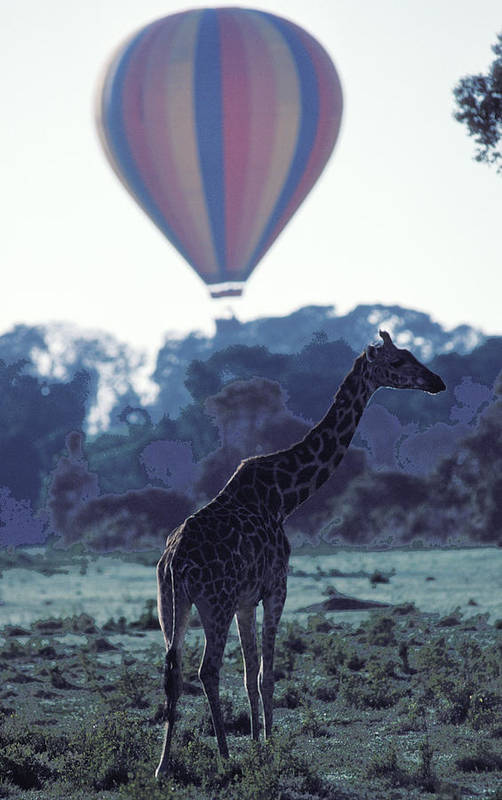 Hot Art Print featuring the photograph Dream Adventure In Kenya by Carl Purcell