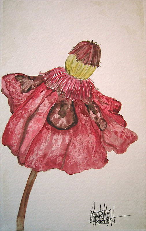 Original Art Art Print featuring the painting Red Poppy by K Hoover