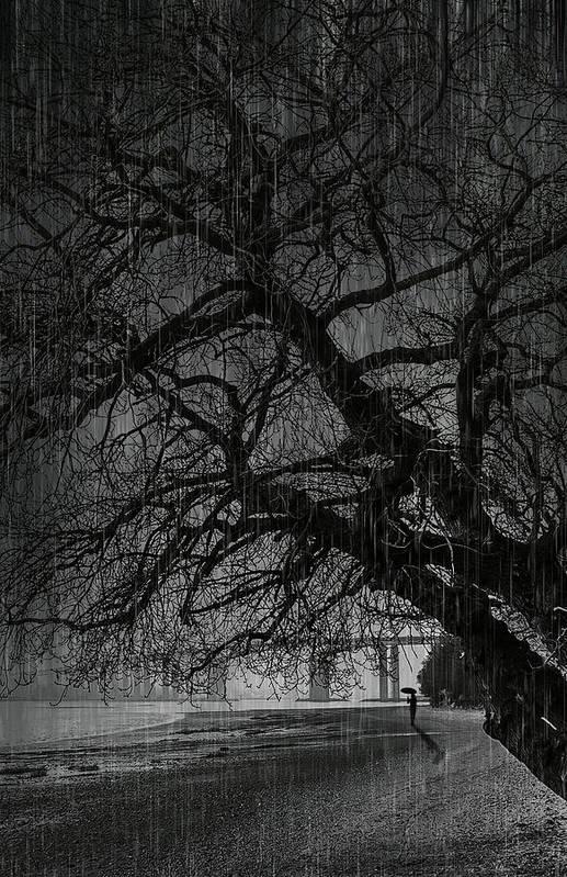 Bay Print featuring the digital art Heavy Rain by Svetlana Sewell